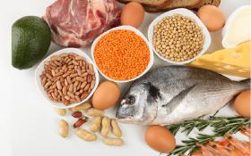 Las Proteínas En La Pirámide Alimentaria Familia Y Salud