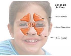 Congestión mucosidad clara en la garganta